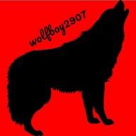 wolfboy2907